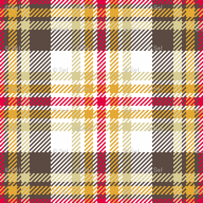 tartan - retro kitchen