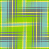 tartan - flights of fancy