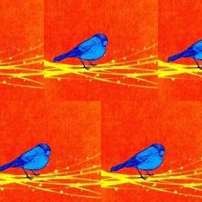 Sparky Blue Bird