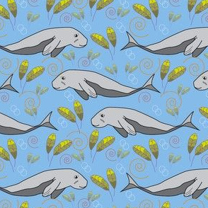 dugong light blue