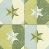 Shade_and_shadow_weathered_stars_dill_pickle_shop_thumb