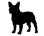 Rrrfrench_bulldog_ed_ed_ed_thumb