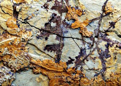 Fieldstone Silty Sandstone