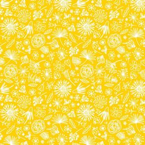 Introverted_Mustard_Spnflwr1