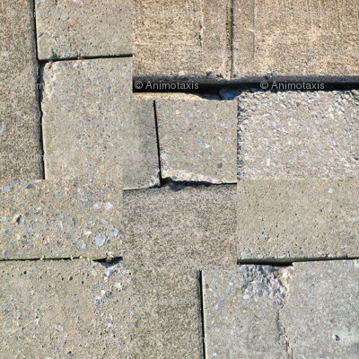 Cracks Collage