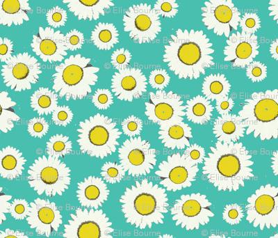 daisy field picnic