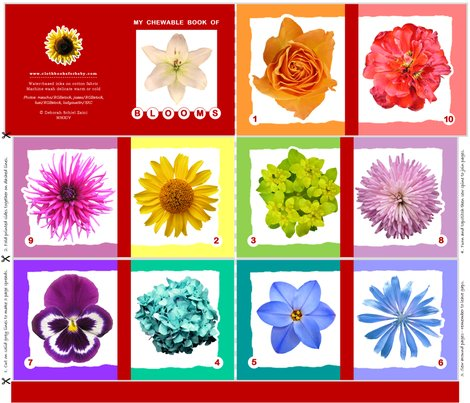 My-chewable-book-of-flowers_shop_preview
