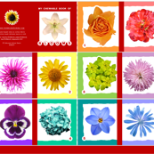 my chewable book of flowers