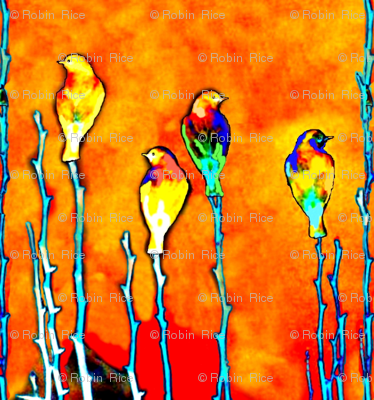 Sentinel Birds