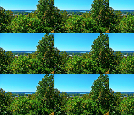 Butler Park Overlook fabric by sgtipton on Spoonflower - custom fabric