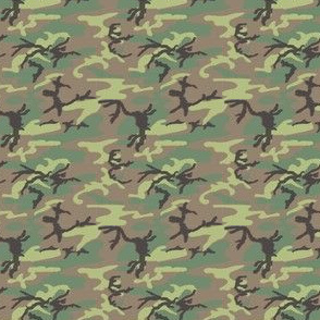 ERDL camouflage (ERDLls)