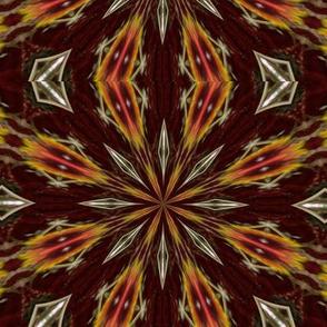Kaleidescope 0225 k2 dark brown background