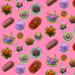 VIRUSES on pink