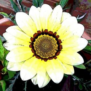 Yellow_Flower_Pillow