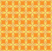 Rcitrus-design-orange-06_shop_thumb