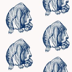 blue bassett hound-ch