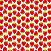 Strawberries_a_shop_thumb