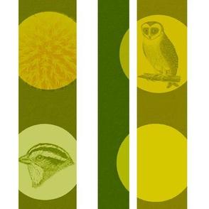 owl nature green stripes