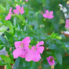 Field_of_Flowers_Pillow