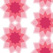 Starburst Pink flower 2