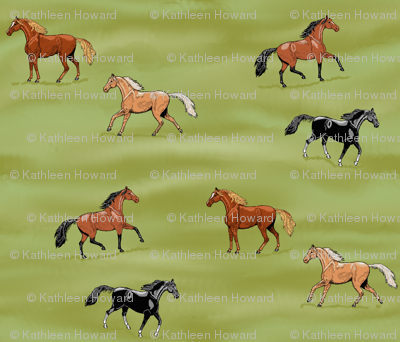 Horses Pasture Frolic