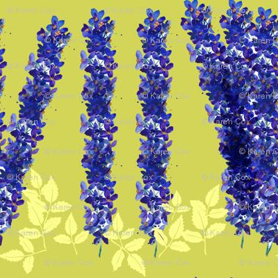 delphinium gardens