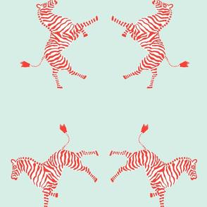 zebra_coral/aqua