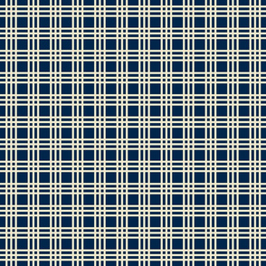 Mary Ann Kilrain_plaid navy