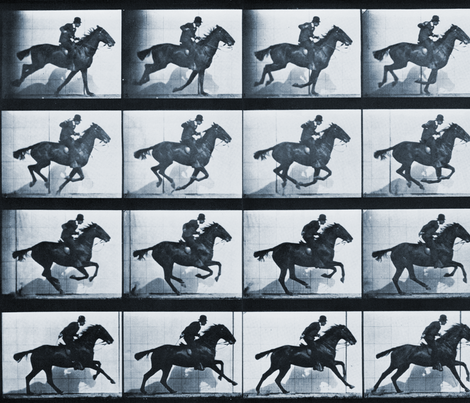 E.M.'s Horse in Motion: FIlm Fabric from Early Cinema fabric by mastersoffate on Spoonflower - custom fabric