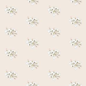 Pear Floral II