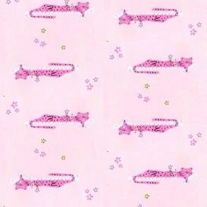 Sleeping Pink Leopards