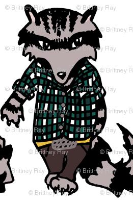 Raccoon Swagger II.
