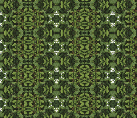 Cornell_Plantation_Gardens_044 fabric by thatswho on Spoonflower - custom fabric