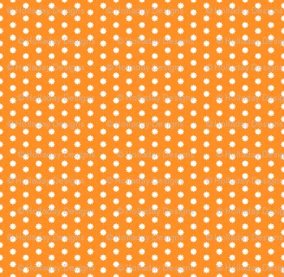Citrus Orange Surprise