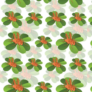 Spoonflower_Cricket_Design