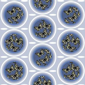 C1 - Melanargia larissa