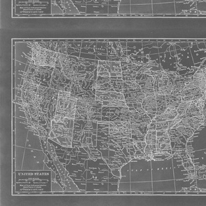 Minimalist Grey and White Map of the United States-ed