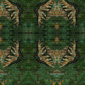 Swallowtails-ch-ed