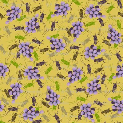 Crickets in the Vinyard