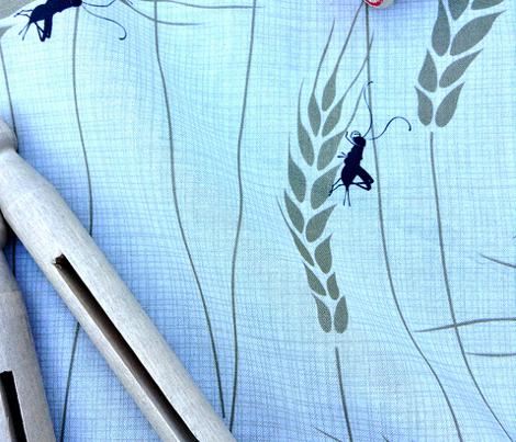 Singing Crickets in Julie's Field