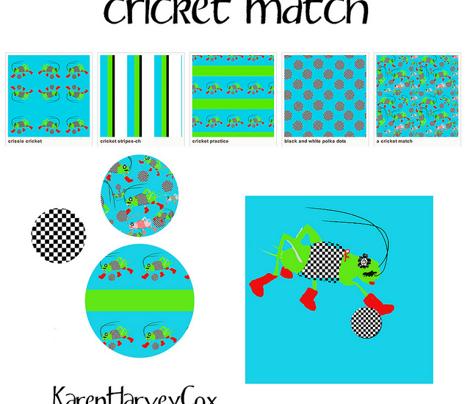Circket_practice_comment_321696_preview