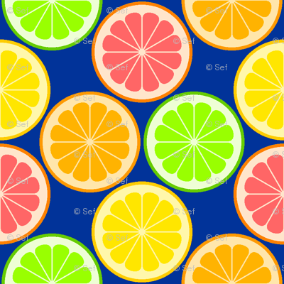 citrus slices S43X