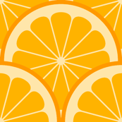 citrus scale 1x X - orange