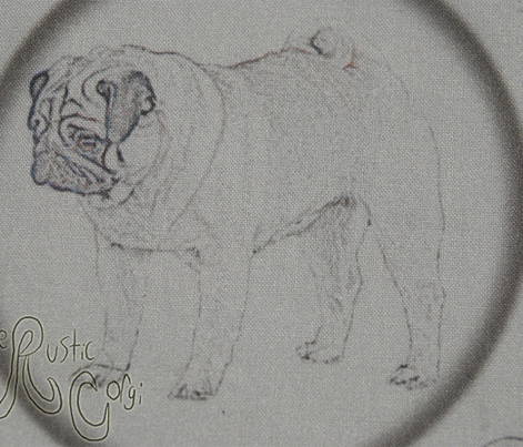 Pug Penny rounds