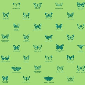 butterfly alphabet - pine