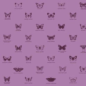 butterfly alphabet - twilight mauve