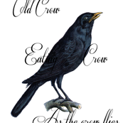 The Vintage Crow