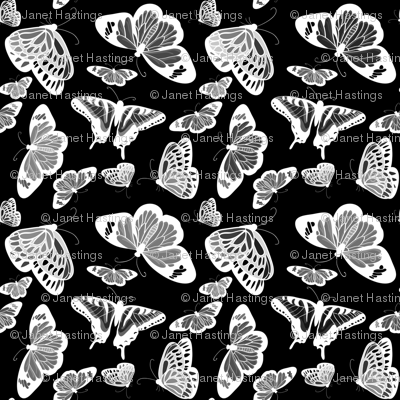 Butterflies white on black
