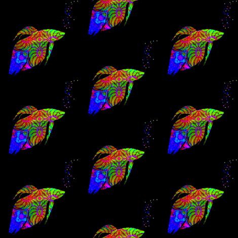 Neon Fish School:  Phylum Chordata Neon Rainbow-ed