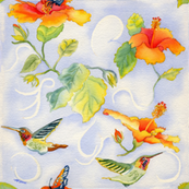 Hummingbirds_with_Hibiscus